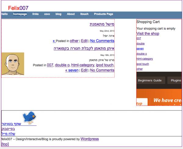 basic felix007 website