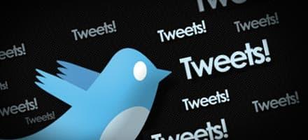 מדריך וורדפרס: הצגת עידכוני טוויטר באתר שלכם